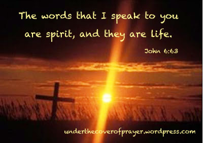 John 6:63 Archives - Growing Through God's Word