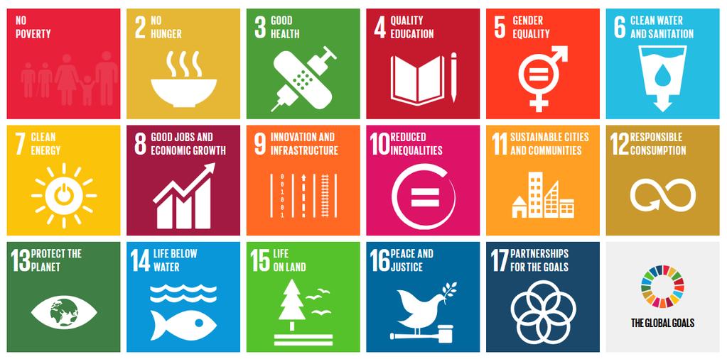 Understanding the Sustainable Development Goals: Five Key Questions - UN Tribune