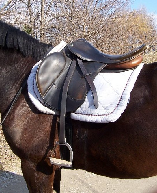 File:English saddle.jpg - Wikimedia Commons