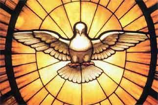 File:Gian Lorenzo Bernini - Dove of the Holy Spirit.JPG - Wikipedia