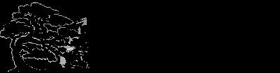[http://upload.wikimedia.org/wikipedia/commons/a/ae/Salixos-logo.png]