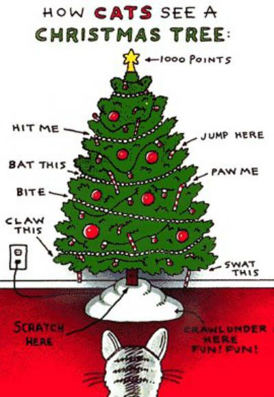 How Cats See A Christmas Tree - Neatorama