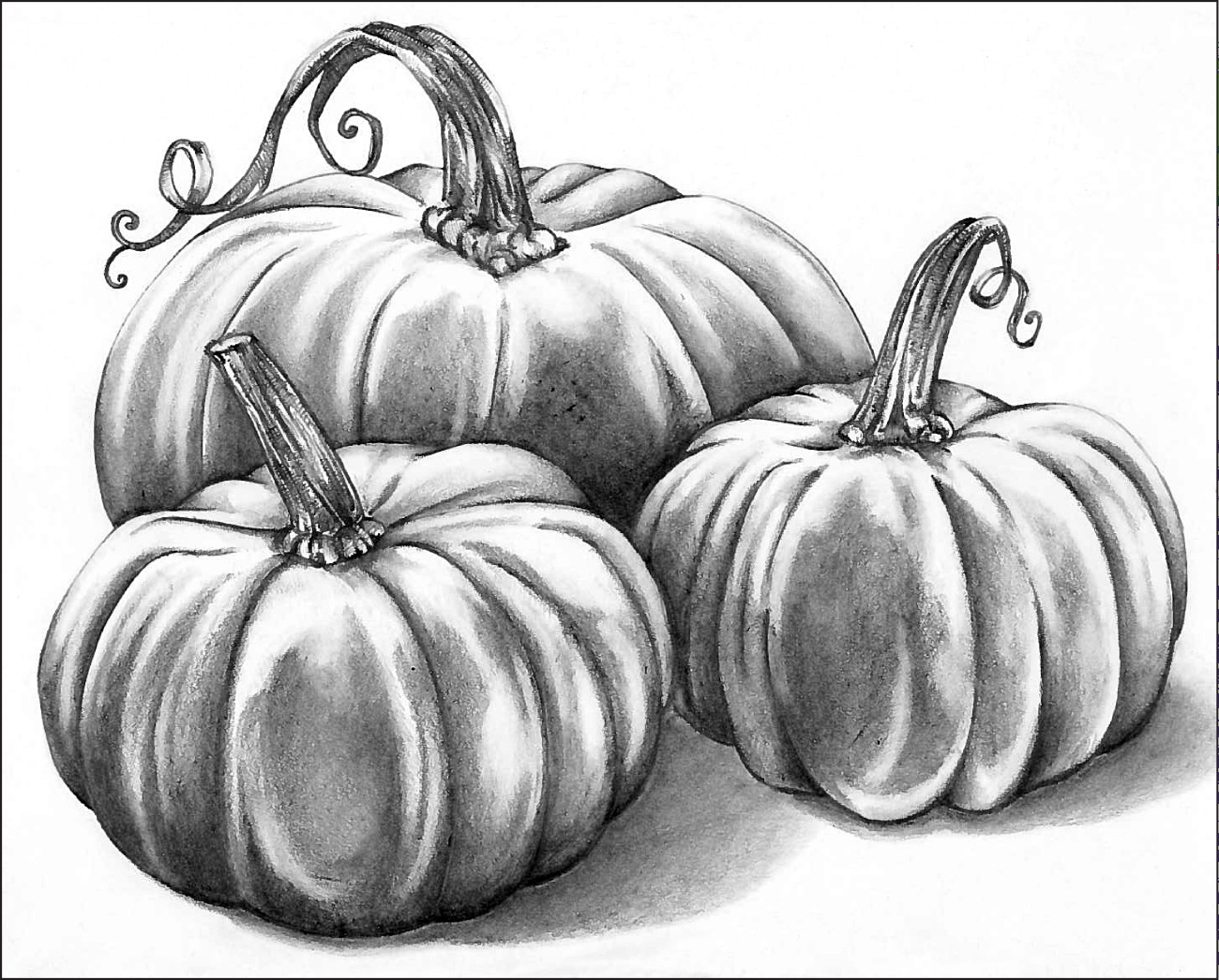 Graphite Pencil: Pumpkin Patch
