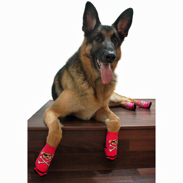 ?u=http%3A%2F%2Fwww.baxterboo.com%2Fglobal%2Fimages%2Fproducts%2Flarge%2Fpirate-girl-pawks-dog-socks-1.jpg&f=1