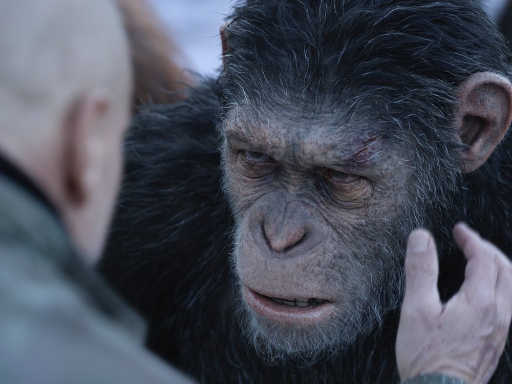 War for the Planet of the Apes review: a highly evolved ...