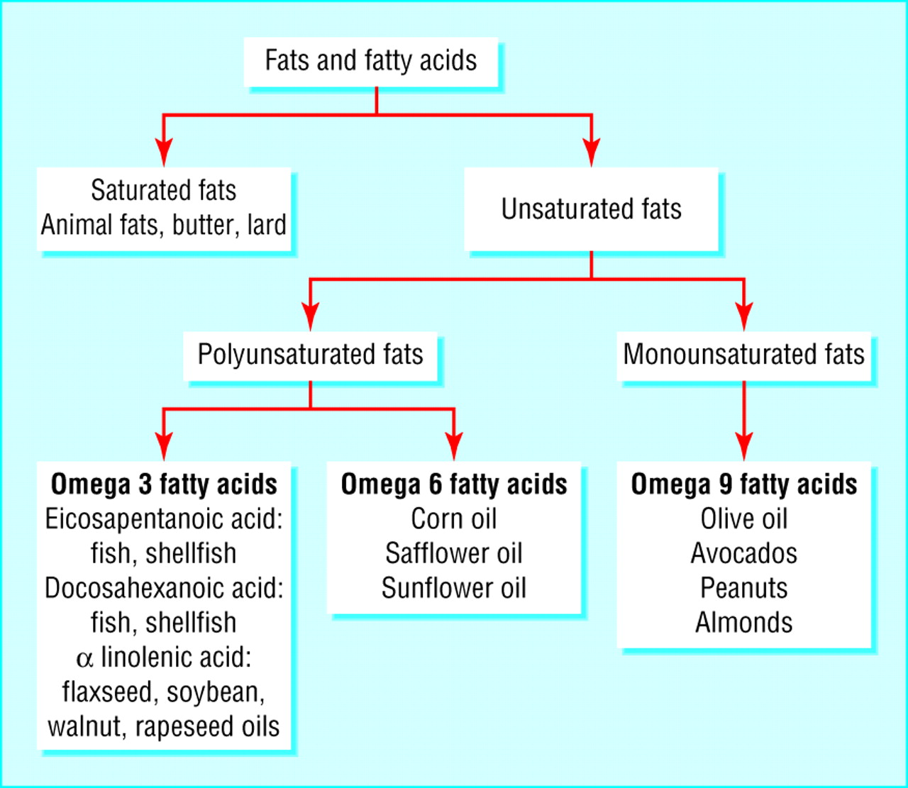 Omega 3 fatty acids and cardiovascular disease—fishing for a natural treatment | The BMJ