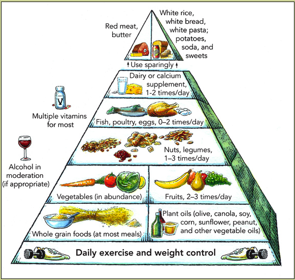 New USDA Food Plate Pyramid Replacement