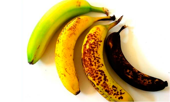 Científicos desarrollan plátanos genéticamente modificados ...