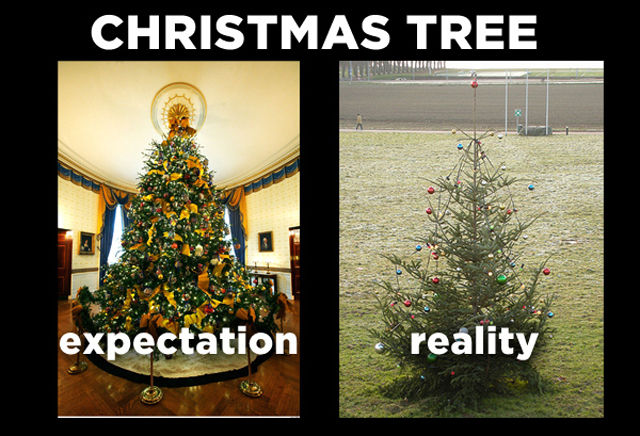 Holiday Expectations vs. Reality (7 Pics)