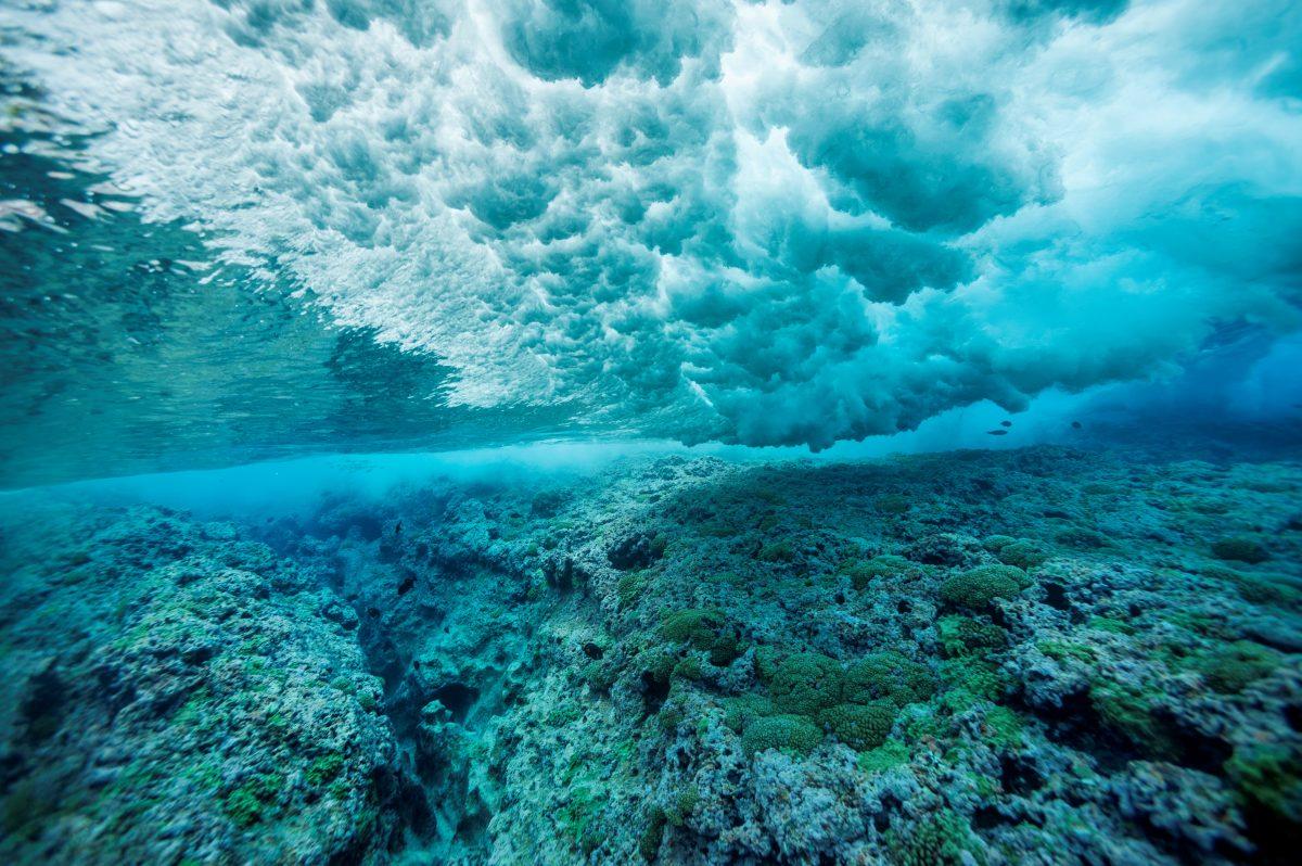 La Mer creme Blue HeartEdoardo Alaimo