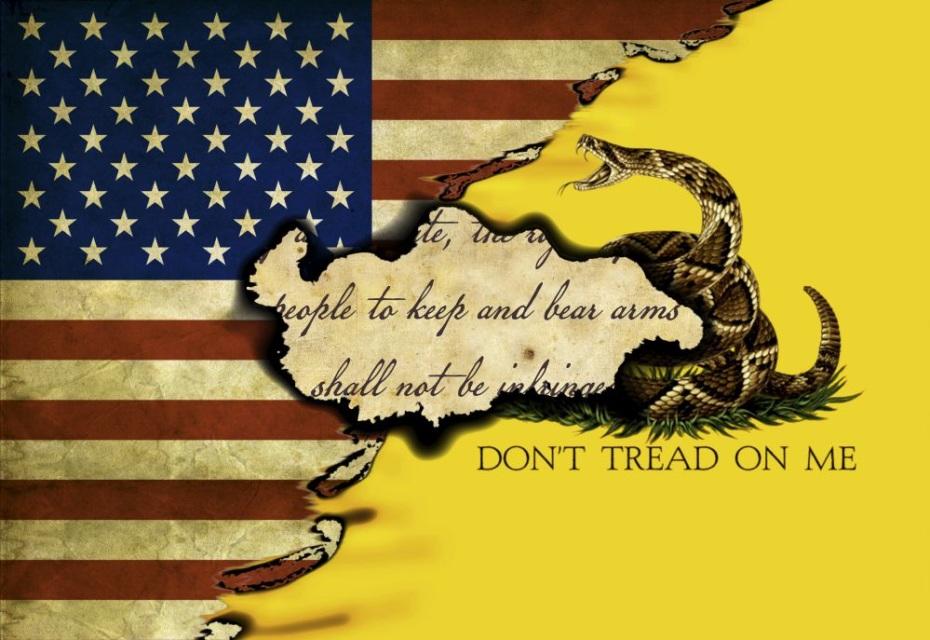 US Gadsden Flag 23 11x16 Pattern