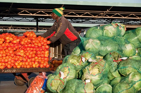 New study into implications of WTO for African trade