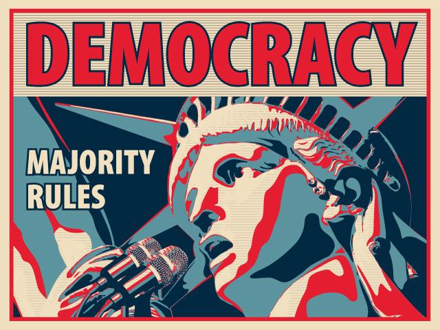 The Problem of Stupidity in Democracy - Howard I. Schwartz Ph.D.