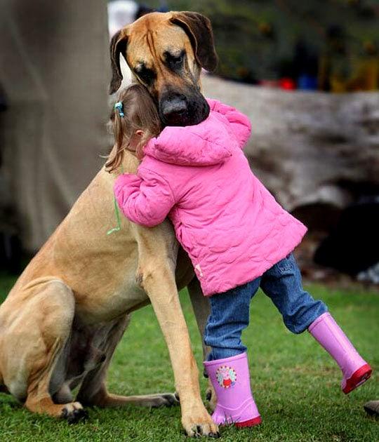 Big Dogs Give Big Hugs
