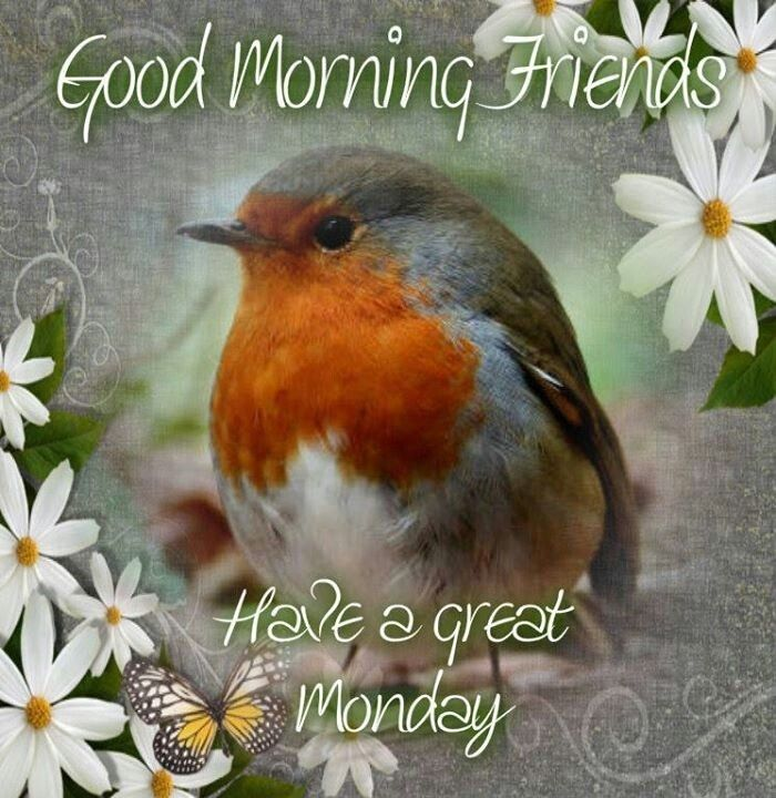 Good Morning Monday Pictures, Photos, and Images for Facebook, Tumblr ...