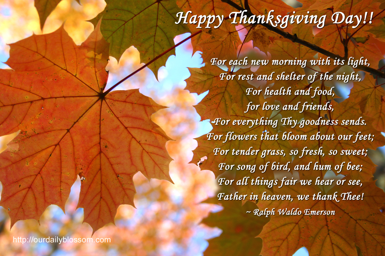 Thanksgiving Quote Pictures, Photos, and Images for Facebook, Tumblr ...