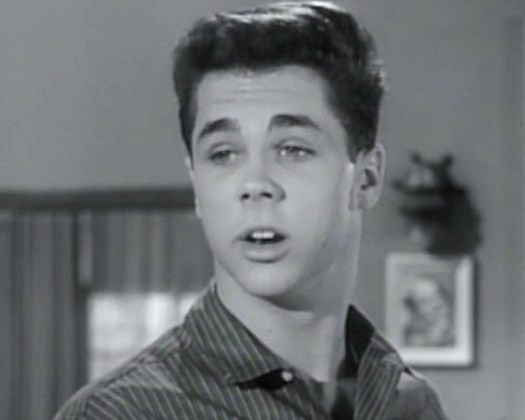 Wally Cleaver