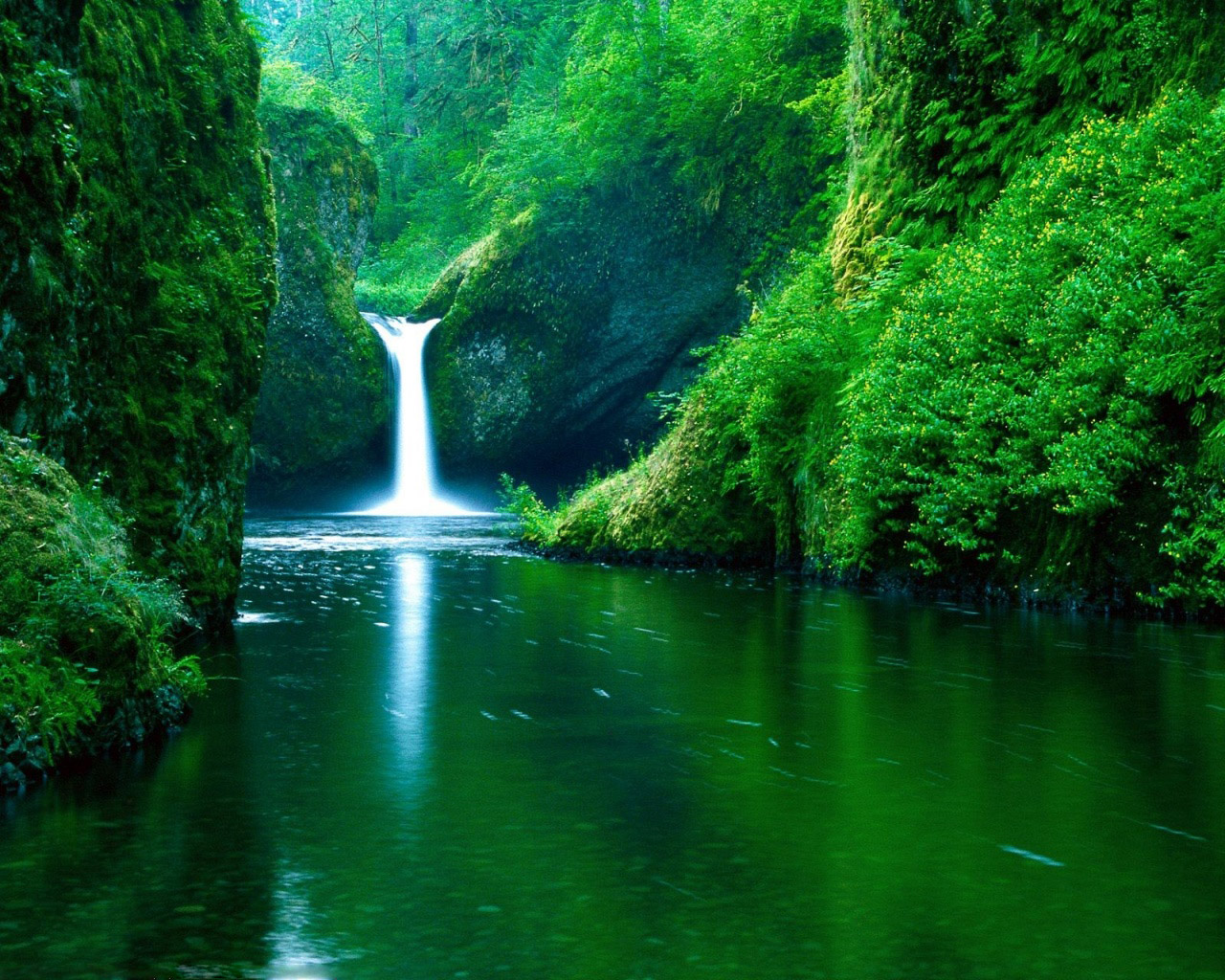 Green Nature – Eco Friendly Wallpapers