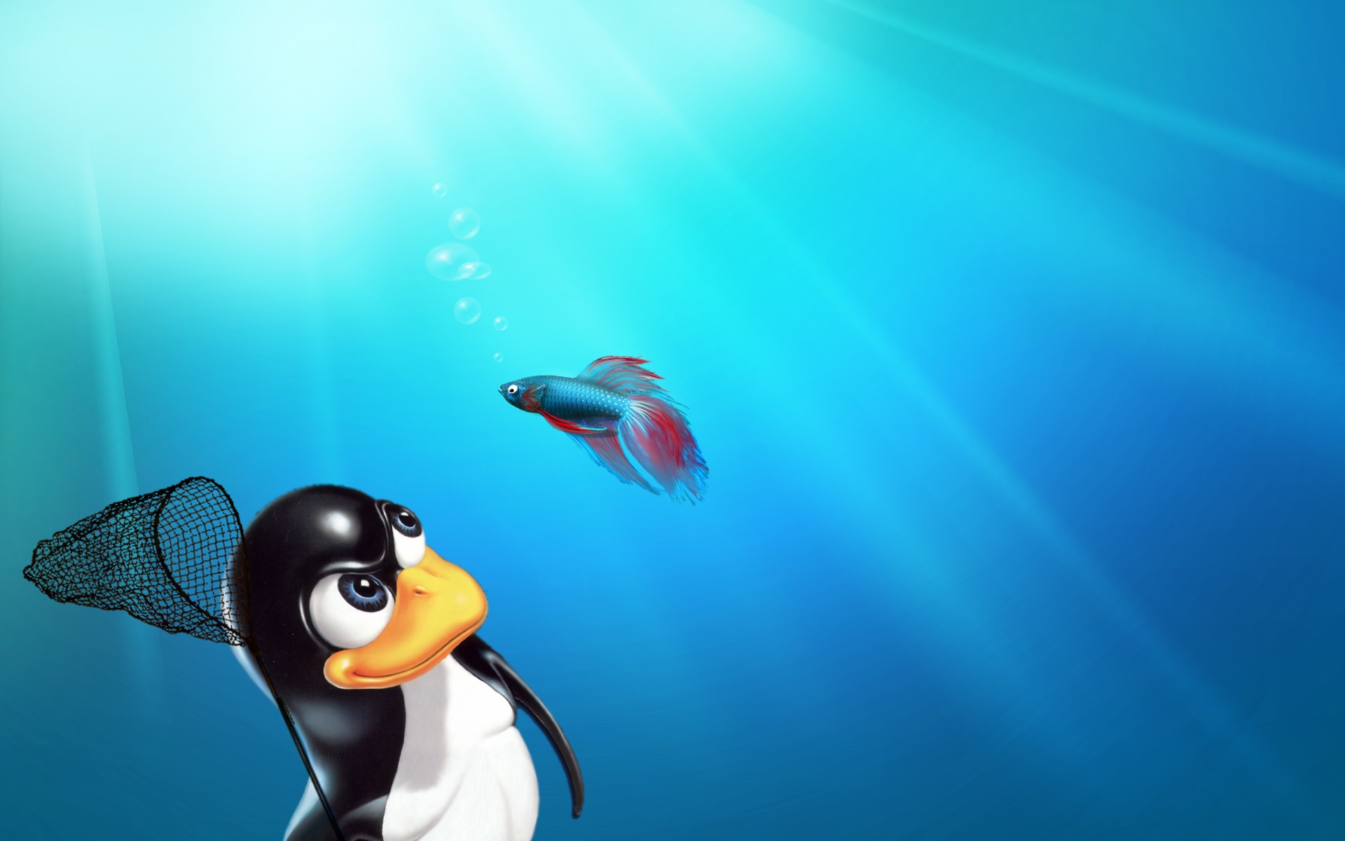 Linux Pinguin | Free Desktop Wallpapers for Widescreen, HD and Mobile