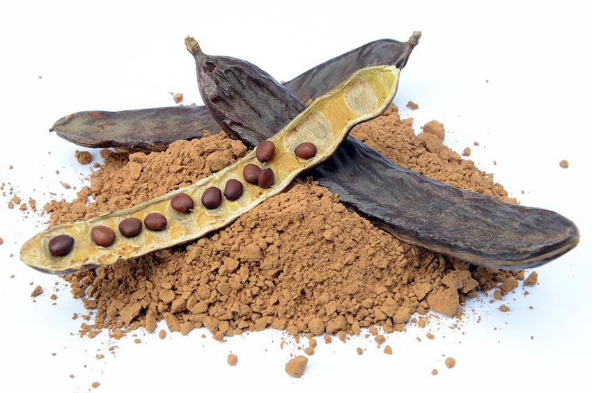 Carob seeds and carob pods on top of carob flour powder.