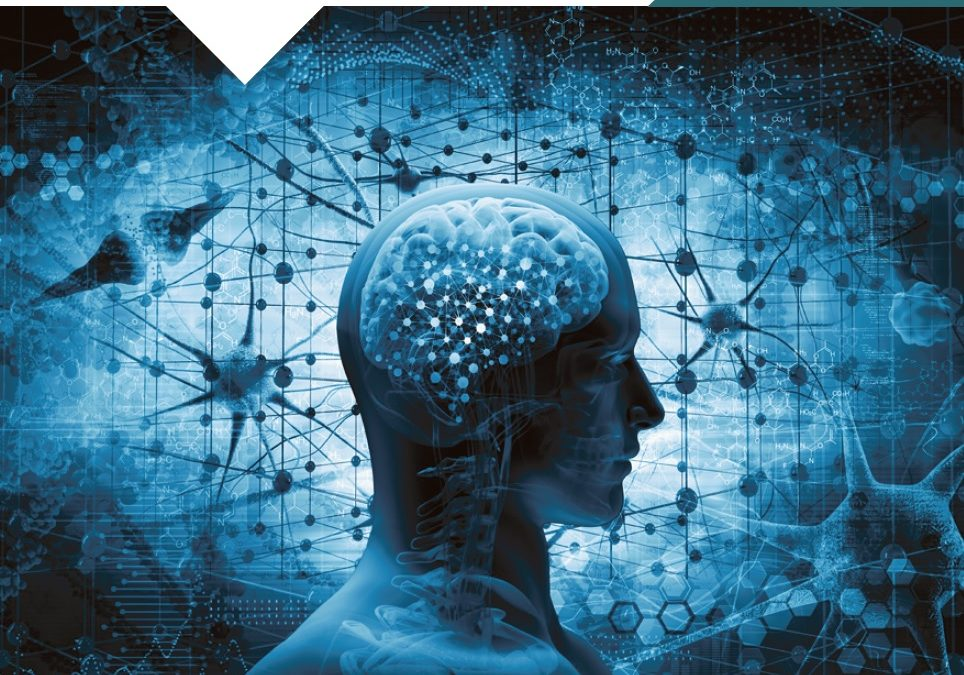 Neurobioethics and Transhumanism Masterclass ...