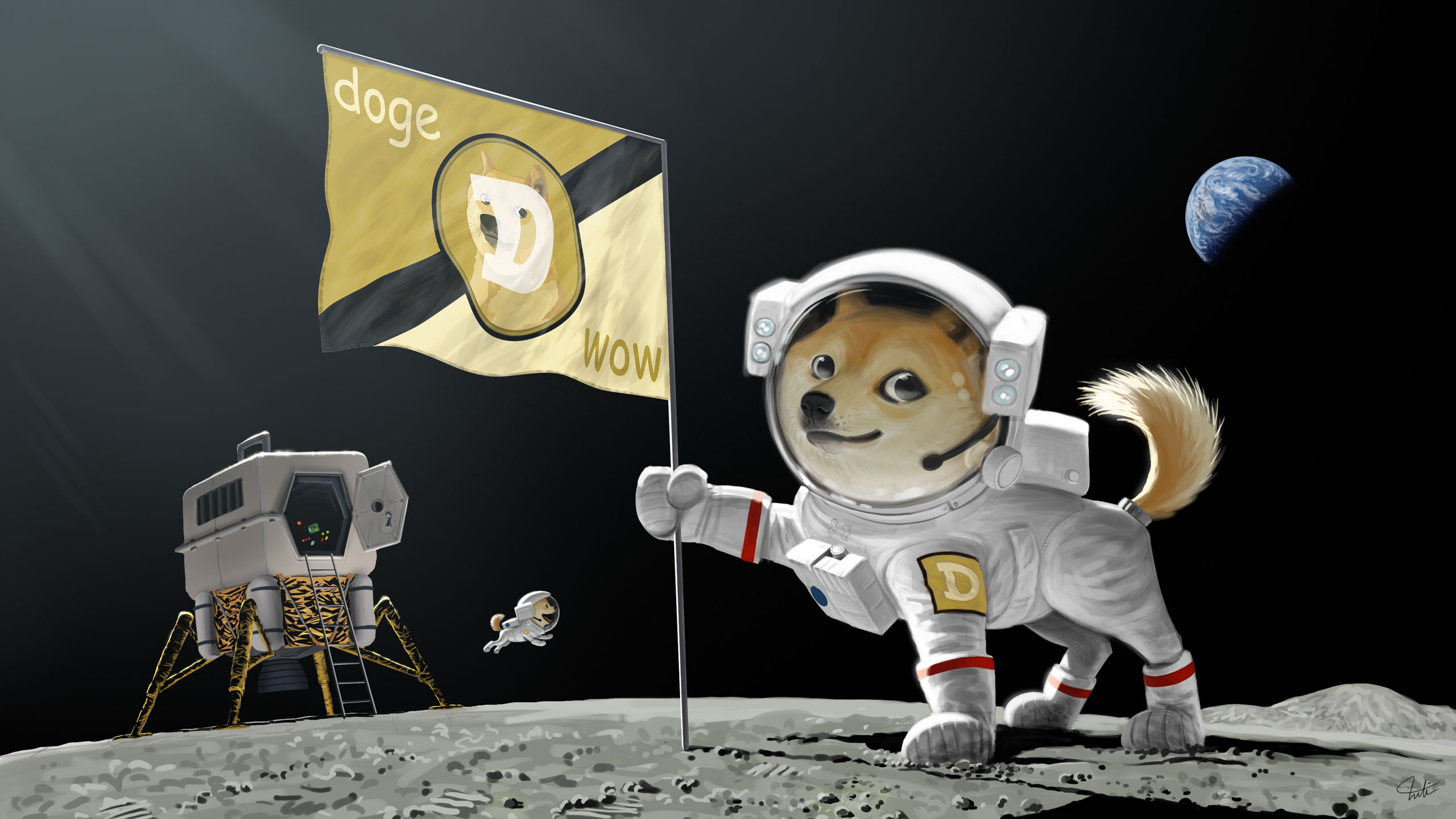 Dogecoin has gone up 33+% in the past 24 hours. Moon ...