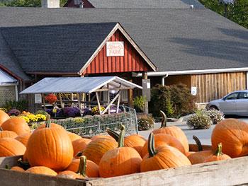 Weber's Cider Mill Farm, Market, Bakery, & Fresh Turkeys ...