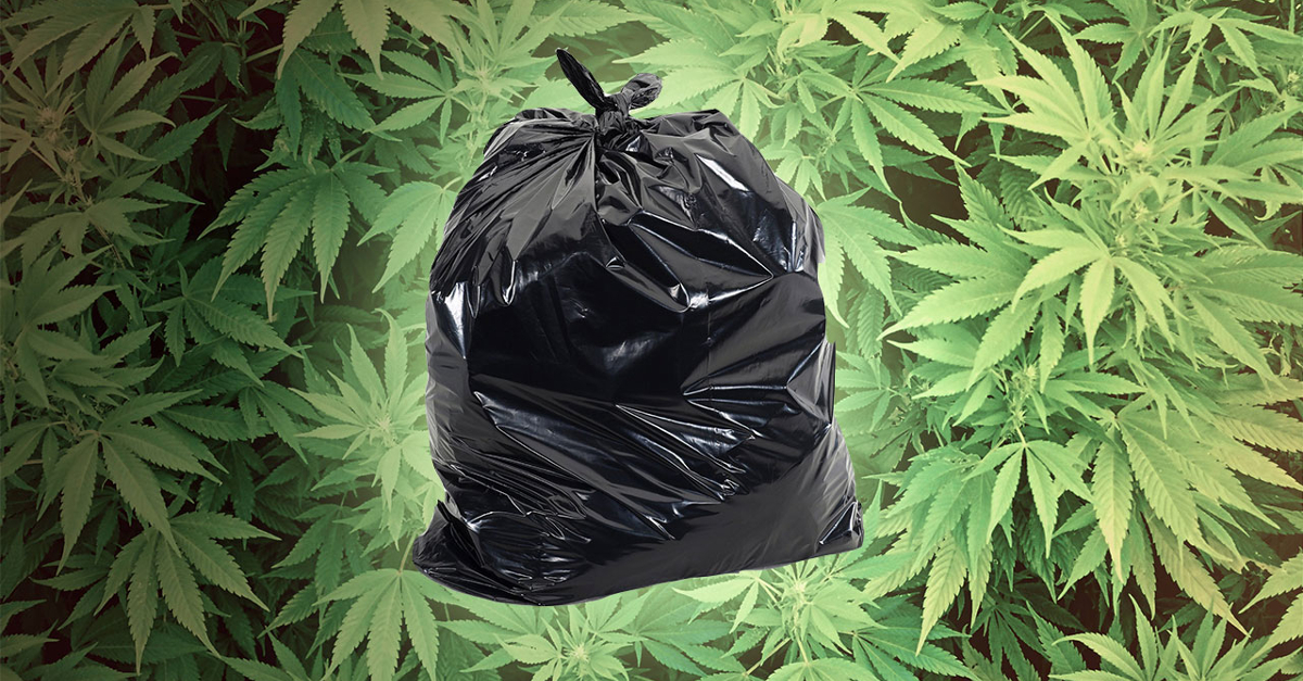 Do Not Donate Giant Bags of Weed to Thrift Stores - Weedist