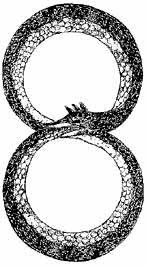 ouroboros.jpg&f=1&nofb=1