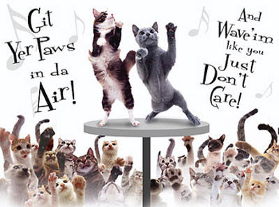 ... SMw0-aP8R8I/AAAAAAAAB4Y/RcBcAcE5dJ4/s400/cat-party=dancing-cats.jpg
