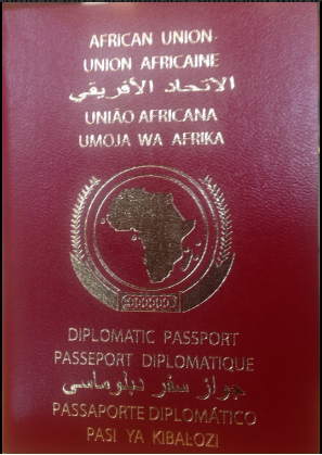 pasaporte africano