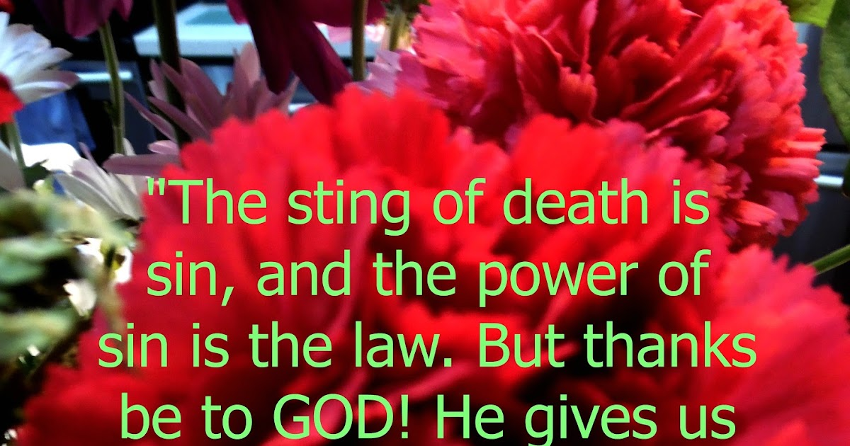 """Flowery Blessing: """"The sting of death is sin, and the ..."""