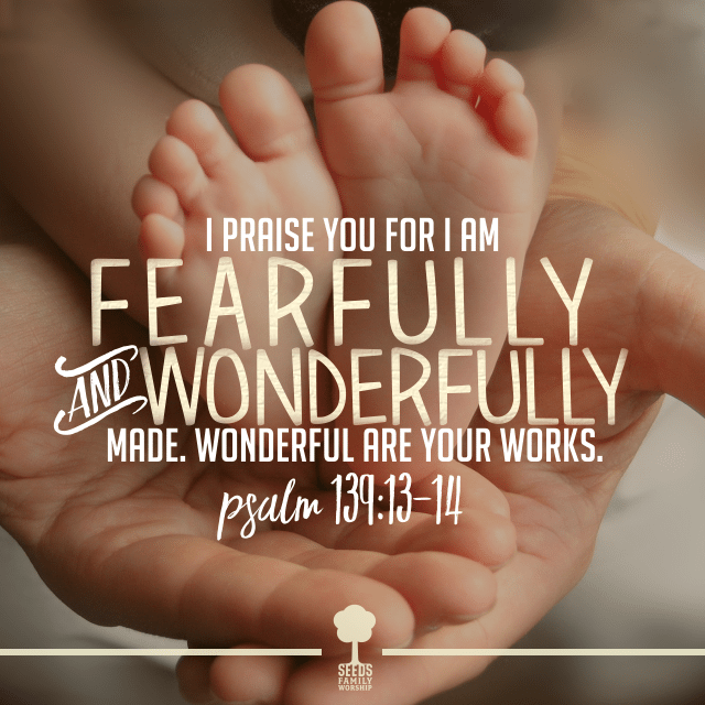 Fearfully & Wonderfully Made (Psalm 139:13-14) • Seeds ...