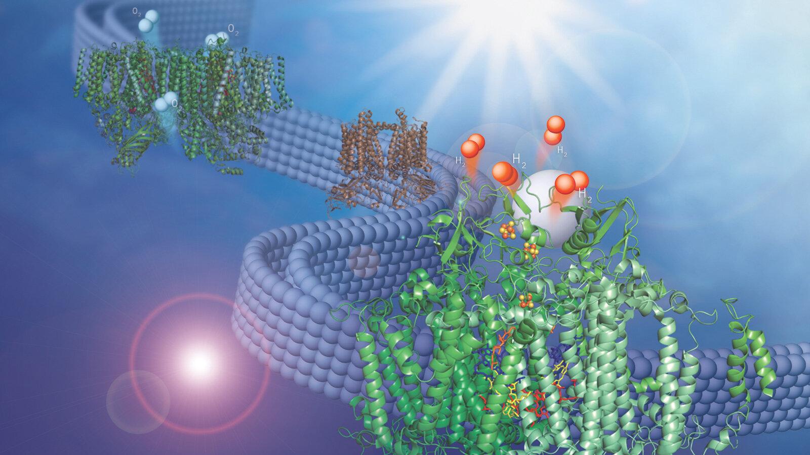 Scientists convert plastics into useful chemicals using sunlight…