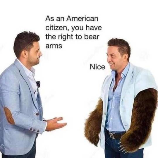 right to bear arms on Tumblr
