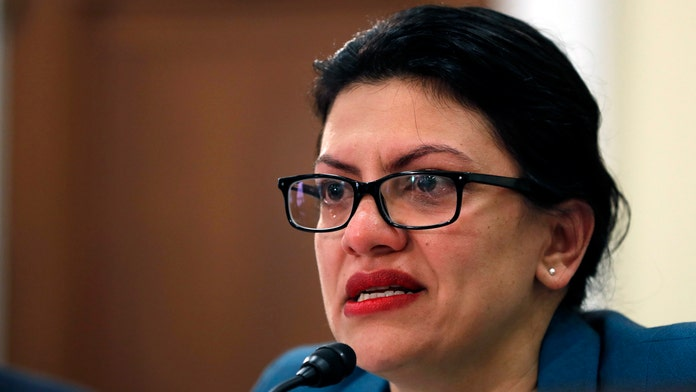 Ethics Committee releases messages showing Tlaib asking campaign for personal money, a government watchdog said she possibly violated federal law in the process…