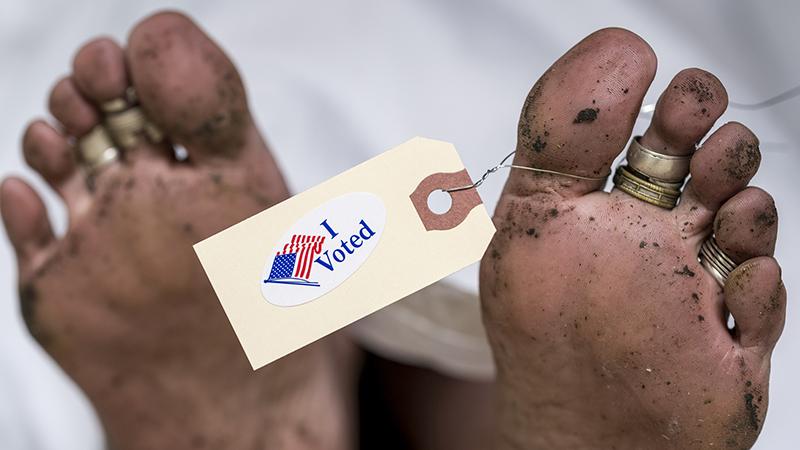 Dead Man Voting: Fox News Host Rolls Out List of Deceased ...