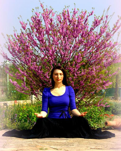 tree meditation | Flickr - Photo Sharing!