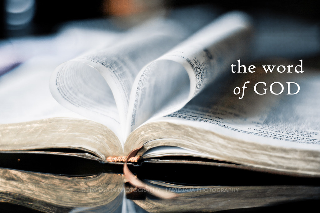 the word of God | has been extremely busy lately this is one ...