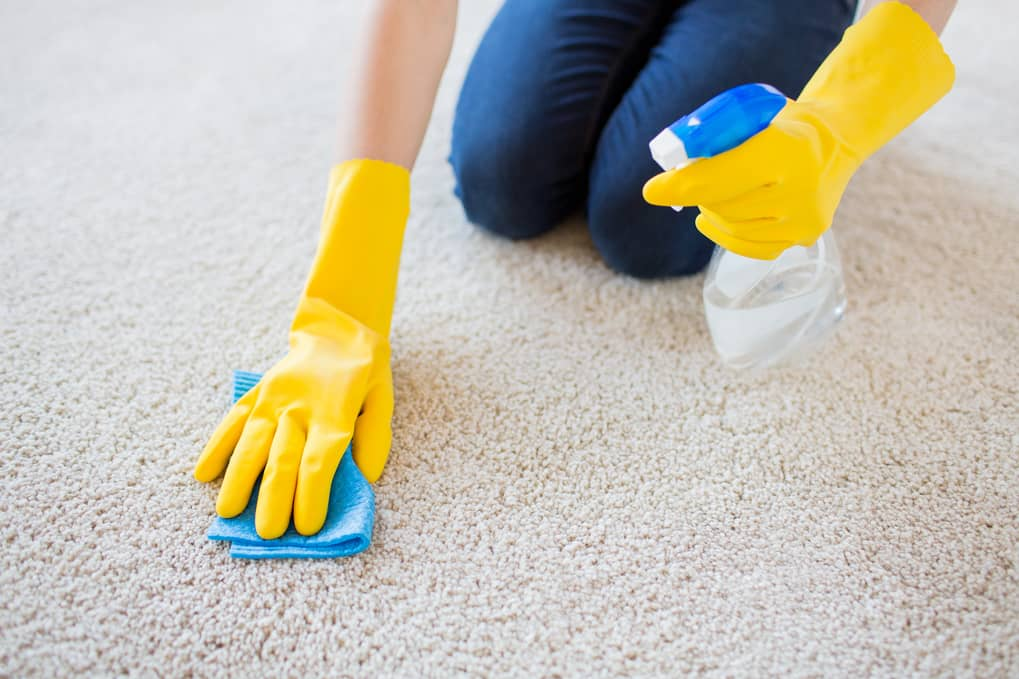 Carpet Cleaning Tips and Tricks | Carpet Cleaners Near Me