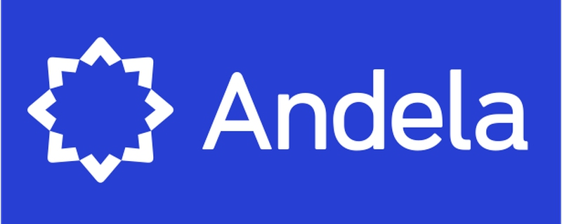 People Leadership Role at Andela | Movemeback