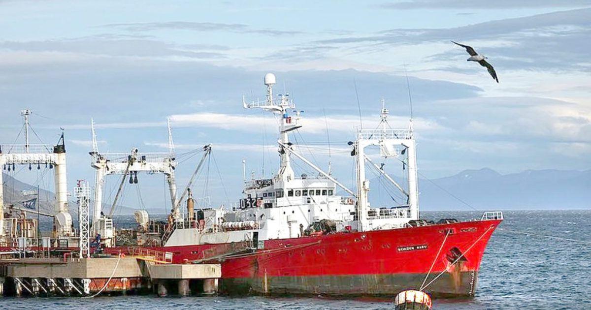 Fishermen Test Positive For Coronavirus Despite Spending ...