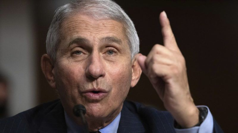 'Cancel Thanksgiving': Dr Fauci Demands Americans ...