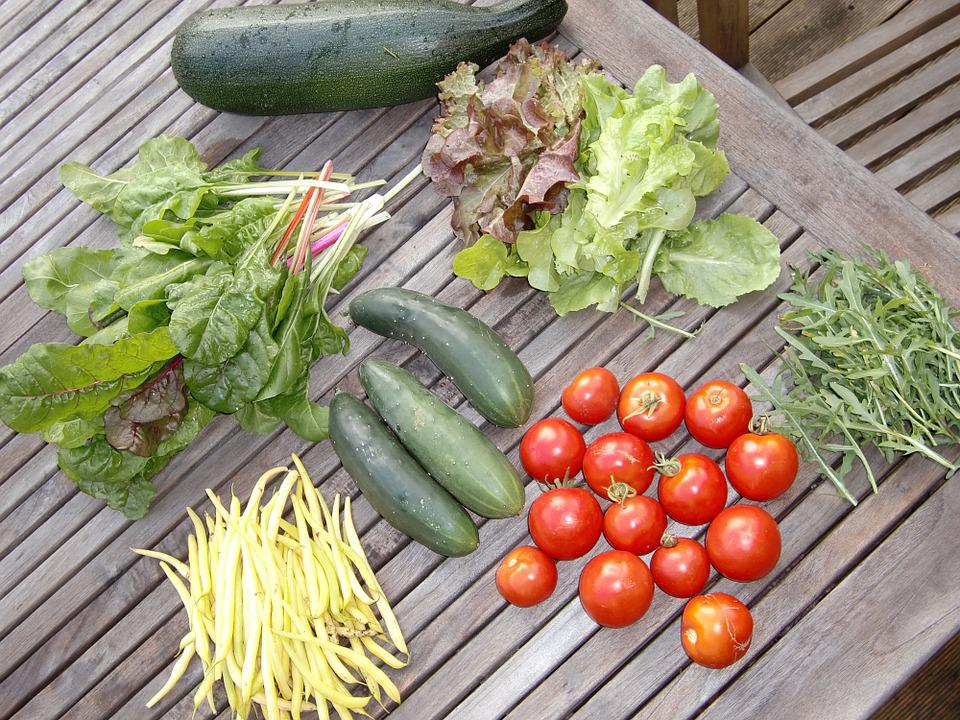 Free photo: Vegetables, Garden, Frisch, Food - Free Image ...