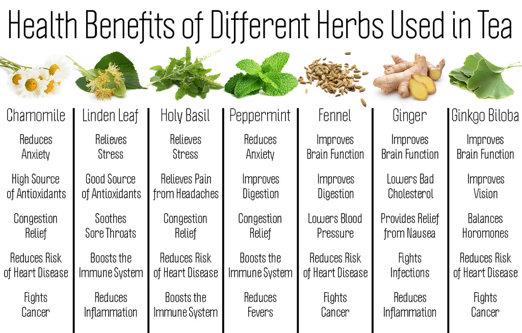 What is Herbal Tea? Benefits and Characteristics | Full ...