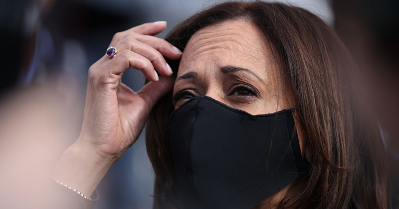Kamala Harris Blasted For Going 'Full Marxist' In Campaign ...
