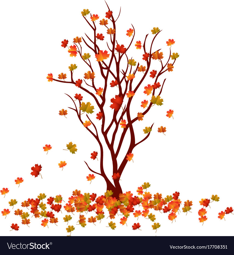 Autumn tree fall leaves background Royalty Free Vector Image