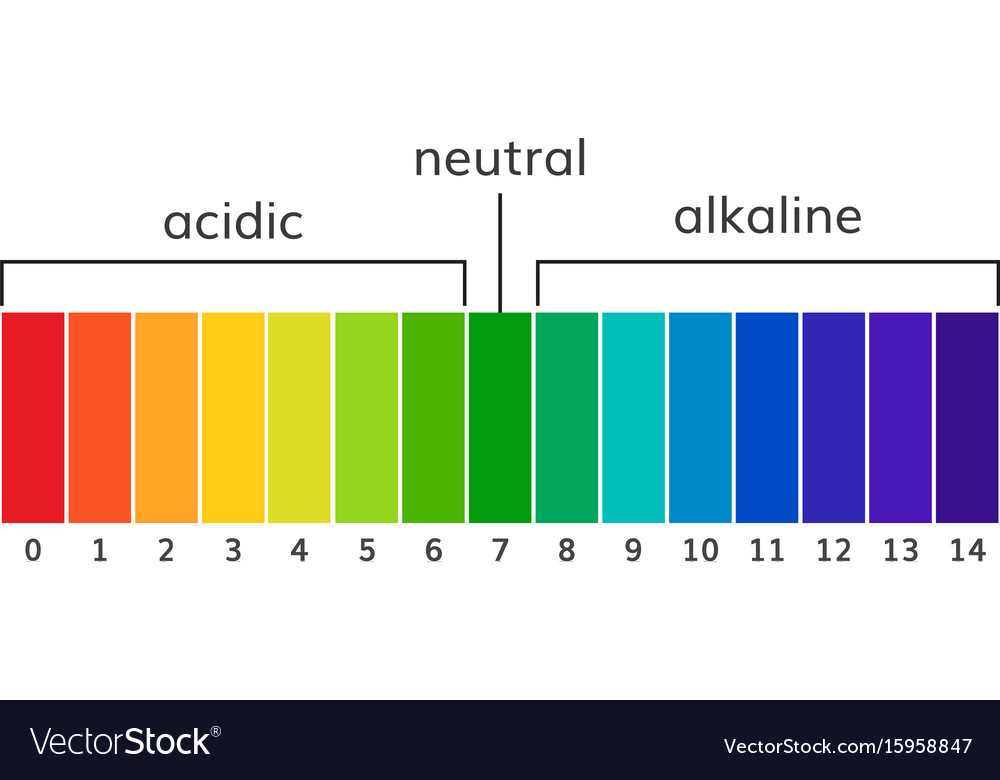 Chart ph alkaline and acidic scale Royalty Free Vector Image