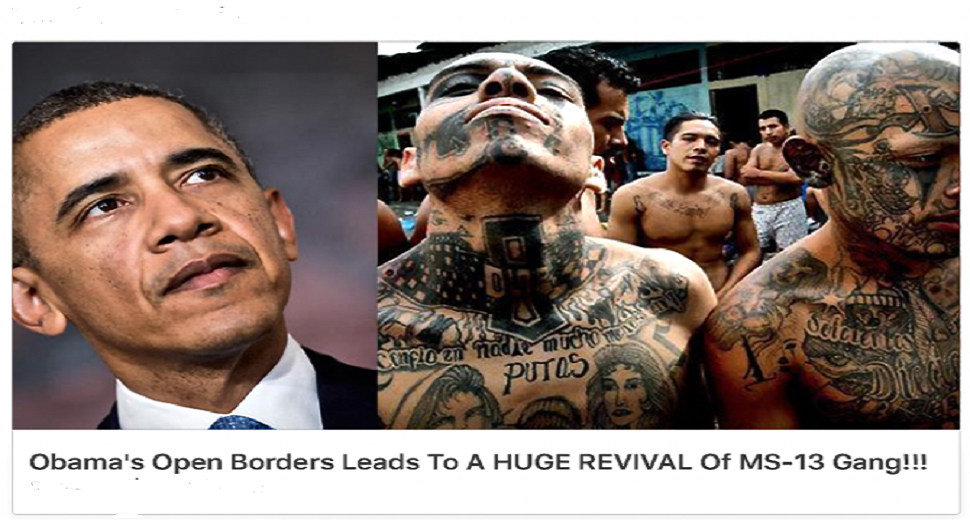 MS 13 and Obama