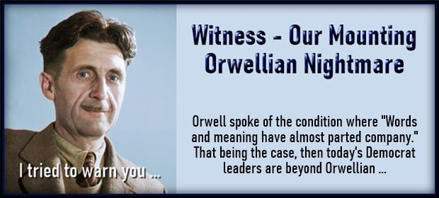 Witness - Our Mounting Orwellian Nightmare: It's A Fine ...
